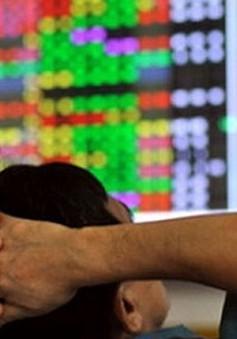 TTCK Việt Nam: Nhiều cổ phiếu xuống vùng giá thấp nhất trong lịch sử