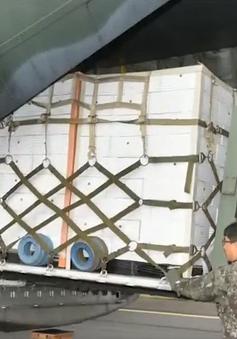 Hàn Quốc đáp lễ 2 tấn nấm thông của Triều Tiên bằng 200 tấn quýt