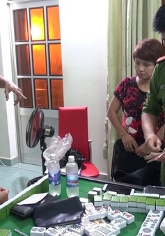 Gia tăng hành vi vi phạm pháp luật Việt Nam của khách du lịch nước ngoài