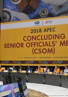 Việt Nam dự Hội nghị tổng kết các Quan chức cao cấp của APEC 2018