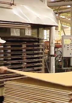 Sản phẩm gỗ Trung Quốc chuyển qua Việt Nam để né thuế?