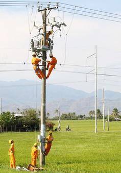 Trà Vinh: Đầu tư 14 tỷ đồng để phát triển điện nông thôn