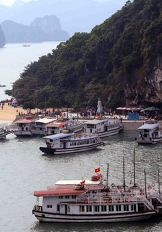 Kiểm tra chất lượng các tàu vận tải khách trên vịnh Hạ Long
