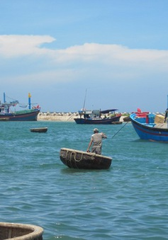 Tàu cá chìm trong đêm tại Ninh Thuận, chủ tàu mất tích