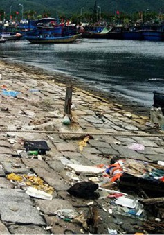 Âu thuyền và Cảng cá Thọ Quang vẫn ô nhiễm nặng