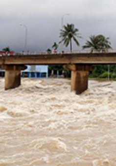 Cảnh báo lũ trên sông Cái, Nha Trang