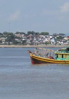 Ngư dân Bình Thuận tất bật ra khơi sau bão
