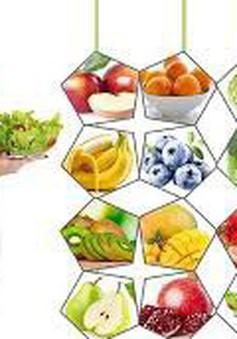Chế độ dinh dưỡng thai kỳ giúp con khỏe mạnh thông minh