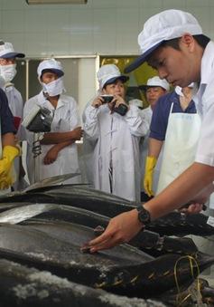 Xuất khẩu cá ngừ khởi sắc dịp cuối năm