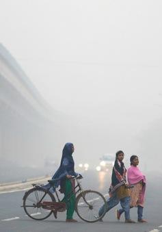 Ấn Độ dẫn đầu thế giới về số người tử vong liên quan tới ô nhiễm