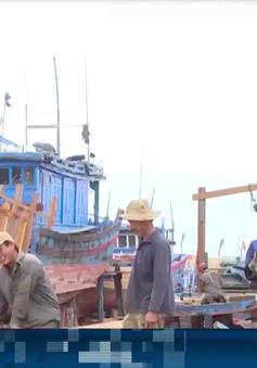 Vay tiền nóng để sửa chữa tàu cá