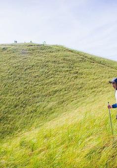Những đồi cỏ xanh bạt ngàn trên cung đường trekking đẹp nhất Việt Nam