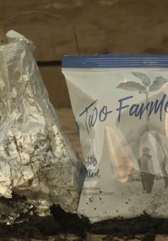 Vỏ bim bim có thể phân hủy được giúp bảo vệ môi trường