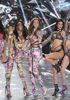 Siêu mẫu bạch tạng Winnie Harloe nổi bật tại Victoria's Secret Fashion Show 2018