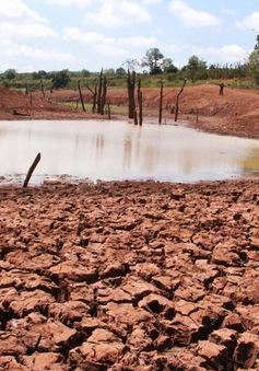 Tiêu điểm: Hạn hán trong mùa mưa