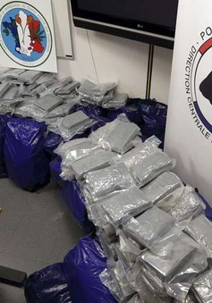 Pháp thu giữ lô ma túy kỷ lục 1,7 tấn