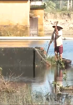 Đà Nẵng ngập lụt kéo dài tại các khu quy hoạch treo