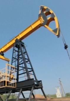 Qatar rút khỏi OPEC có gây ra bất ổn gì cho thị trường vàng đen?