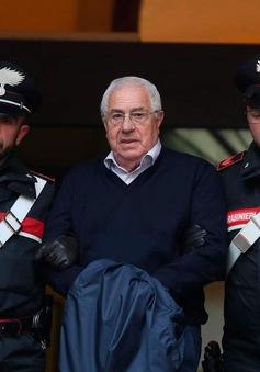 4 nước châu Âu phối hợp bắt giữ mafia