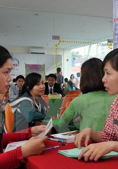 Sàn việc làm TP.HCM tuyển dụng 1.900 nhân sự