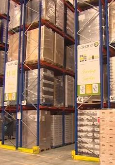Nhu cầu kho chứa hàng hóa tại Anh tăng vọt trước ngày rời EU