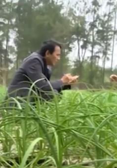 Ôn định sinh kế, nhiều ngư dân Quảng Trị đón Tết đủ đầy