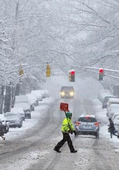 Bão tuyết nghiêm trọng đổ bộ vùng Trung Tây nước Mỹ, hàng trăm chuyến bay bị hủy