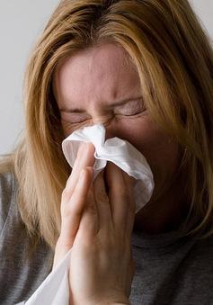 Mỹ cảnh báo dịch cúm tiếp tục diễn biến phức tạp