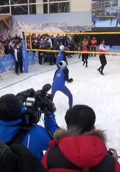 Câu chuyện Olympic: Bóng chuyền tuyết ở PyeongChang