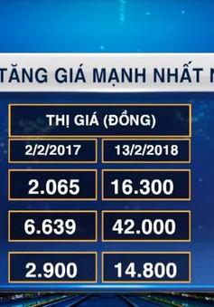 """Đâu là các cổ phiếu """"hợp mệnh"""" nhất trong năm Đinh Dậu?"""