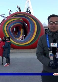 Công viên Gangneung – Nơi gặp gỡ của người hâm mộ thể thao