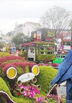 Đà Lạt thu hút hơn 280.000 lượt khách đến du xuân