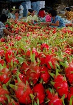 Nông sản Việt chinh phục thị trường xuất khẩu
