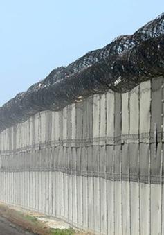 Mexico giải cứu hơn 100 người nhập cư trái phép