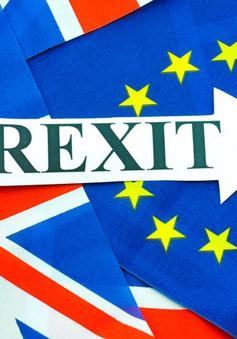 Anh đối mặt với nhiều bất lợi khi tiến hành Brexit