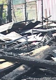 Hỏa hoạn thiêu rụi một xưởng gỗ tại Lâm Đồng