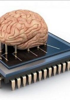 Khám phá ra cách thức giúp máy tính vận hành như não người