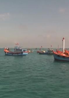 Ngư dân Quảng Ngãi tấp nập mở biển ra Hoàng Sa