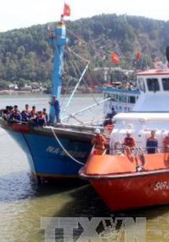 Vũng Tàu: Cứu nạn thành công tàu cá và 11 thuyền viên gặp nạn trên biển