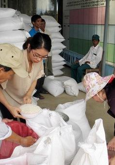 Xuất cấp gạo cho các địa phương dịp Tết