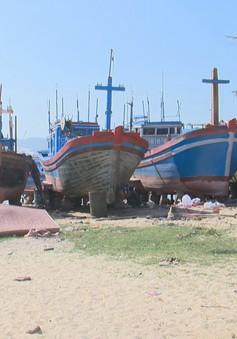 Người dân vùng tâm bão Khánh Hòa chuẩn bị đón Tết