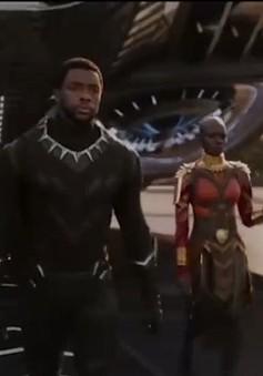 Black Panther - Siêu anh hùng da màu đầu tiên của dòng phim siêu anh hùng