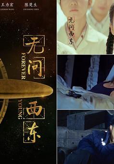 Phim mới của Chương Tử Di kiếm được 108 triệu USD