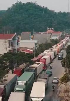 Ùn ứ nông sản tại Lạng Sơn: Nhiều hoa quả bị thối do thời gian chờ đợi quá lâu