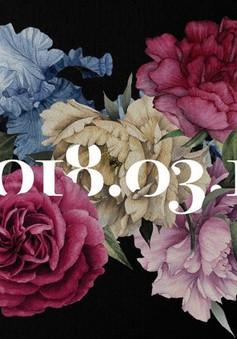 5 bông hoa gây tò mò trên bìa album single chia tay fan của Big Bang