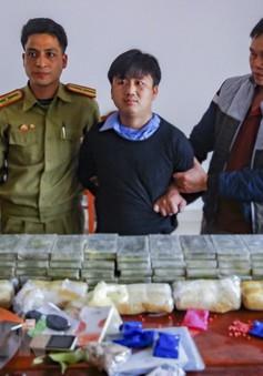 Phá chuyên án ma túy, bắt 3 đối tượng, thu giữ lượng lớn ma túy