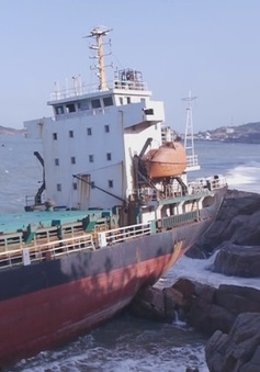 Tháo dỡ tàu hàng Mông Cổ bị mắc cạn ở vùng biển Quy Nhơn