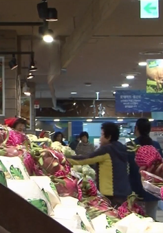 Việt Nam sẽ là thị trường xuất khẩu lớn thứ hai của Hàn Quốc