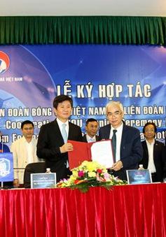 Liên đoàn Bóng đá Việt Nam (VFF) và Liên đoàn Bóng đá Hàn Quốc (KFA) ký kết thoả thuận hợp tác