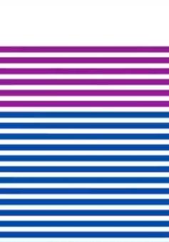 Công bố Chỉ số năng lực cạnh tranh cấp tỉnh 2017